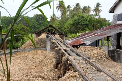 The sugar cane husks